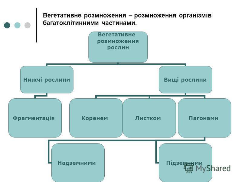 Вегетативне розмноження – розмноження організмів багатоклітинними частинами. Вегетативне розмноження рослин Нижчі рослини Фрагментація Вищі рослини КоренемЛисткомПагонами Надземними Підземними