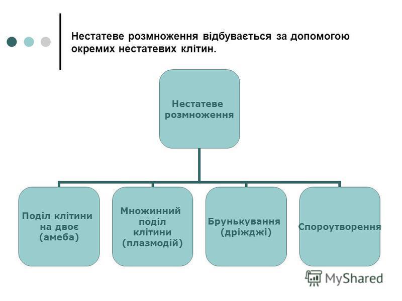 Нестатеве розмноження відбувається за допомогою окремих нестатевих клітин. Нестатеве розмноження Поділ клітини на двоє (амеба) Множинний поділ клітини (плазмодій) Брунькування (дріжджі) Спороутворення