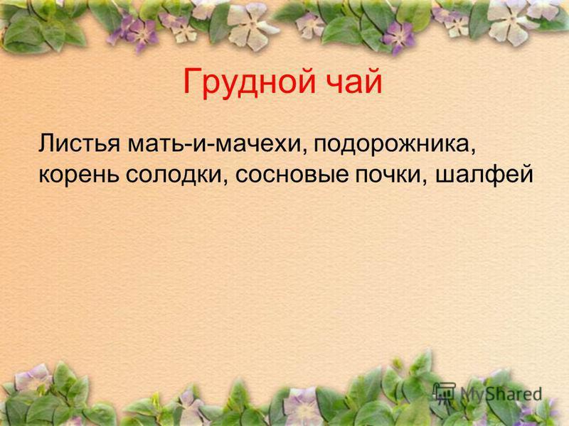 Грудной чай Листья мать-и-мачехи, подорожника, корень солодки, сосновые почки, шалфей
