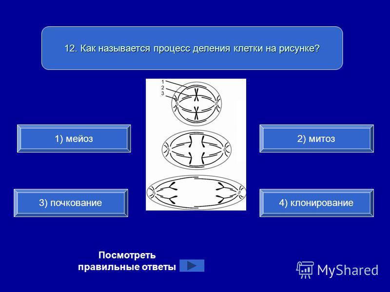 12. Как называется процесс деления клетки на рисунке? 1) мейоз 3) почкование 4) клонирование 2) митоз Посмотреть правильные ответы