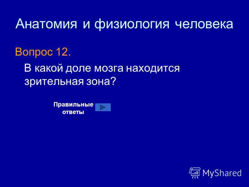 Анатомия и физиология человека Вопрос 12. В какой доле мозга находится зрительная зона? Правильные ответы
