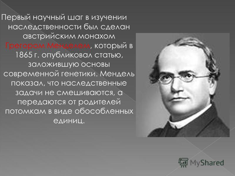 Первый научный шаг в изучении наследственности был сделан австрийским монахом Грегором Менделем, который в 1865 г. опубликовал статью, заложившую основы современной генетики. Мендель показал, что наследственные задачи не смешиваются, а передаются от