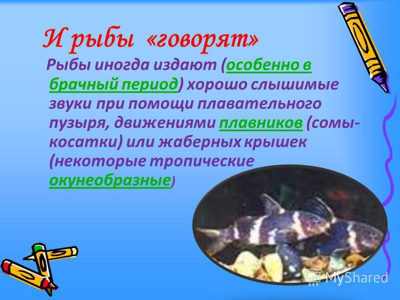 Рыбы иногда издают (особенно в брачный период) хорошо слышимые звуки при помощи плавательного пузыря, движениями плавников (сомы- косатки) или жаберных крышек (некоторые тропические окунеобразные )особенно в брачный период плавников окунеобразные И р