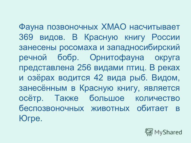 Фауна позвоночных ХМАО насчитывает 369 видов. В Красную книгу России занесены росомаха и западносибирский речной бобр. Орнитофауна округа представлена 256 видами птиц. В реках и озёрах водится 42 вида рыб. Видом, занесённым в Красную книгу, является