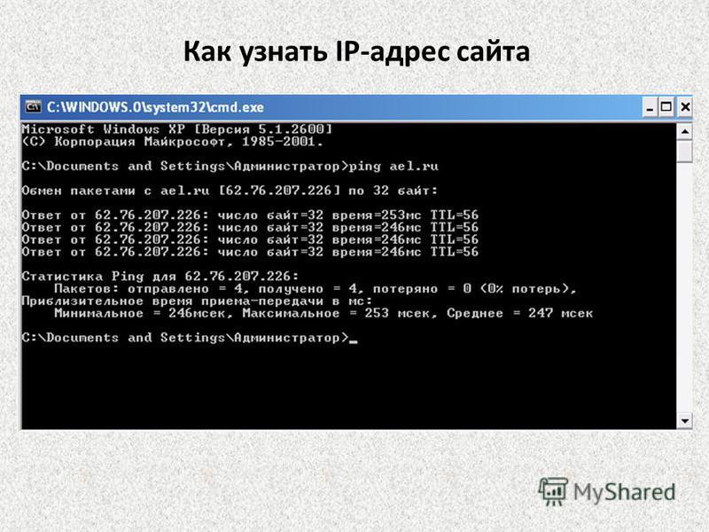 Как узнать IP-адрес сайта