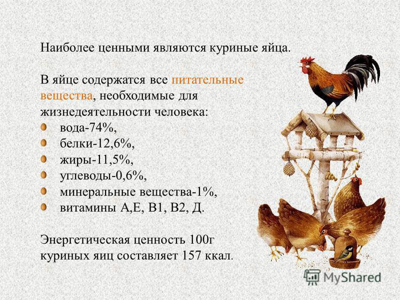 Наиболее ценными являются куриные яйца. В яйце содержатся все питательные вещества, необходимые для жизнедеятельности человека: вода-74%, белки-12,6%, жиры-11,5%, углеводы-0,6%, минеральные вещества-1%, витамины А,Е, В1, В2, Д. Энергетическая ценност