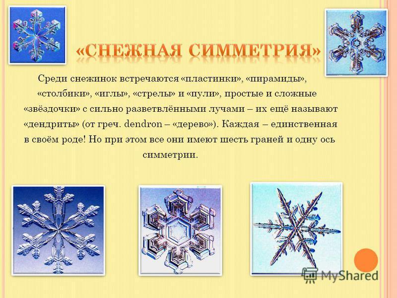 Среди снежинок встречаются «пластинки», «пирамиды», «столбики», «иглы», «стрелы» и «пули», простые и сложные «звёздочки» с сильно разветвлёнными лучами – их ещё называют «дендриты» (от греч. dendron – «дерево»). Каждая – единственная в своём роде! Но