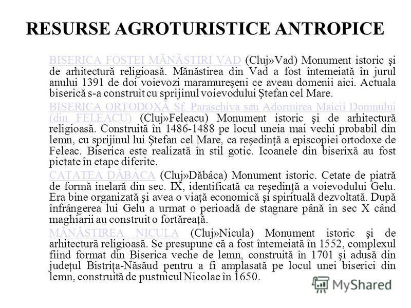 RESURSE AGROTURISTICE ANTROPICE BISERICA FOSTEI MĂNĂSTIRI VADBISERICA FOSTEI MĂNĂSTIRI VAD (Cluj»Vad) Monument istoric şi de arhitectură religioasă. Mănăstirea din Vad a fost întemeiată în jurul anului 1391 de doi voievozi maramureşeni ce aveau domen