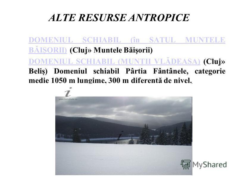ALTE RESURSE ANTROPICE DOMENIUL SCHIABIL (în SATUL MUNTELE BĂIŞORII)DOMENIUL SCHIABIL (în SATUL MUNTELE BĂIŞORII) (Cluj» Muntele Băişorii) DOMENIUL SCHIABIL (MUNŢII VLĂDEASA)DOMENIUL SCHIABIL (MUNŢII VLĂDEASA) (Cluj» Beliş) Domeniul schiabil Pârtia F