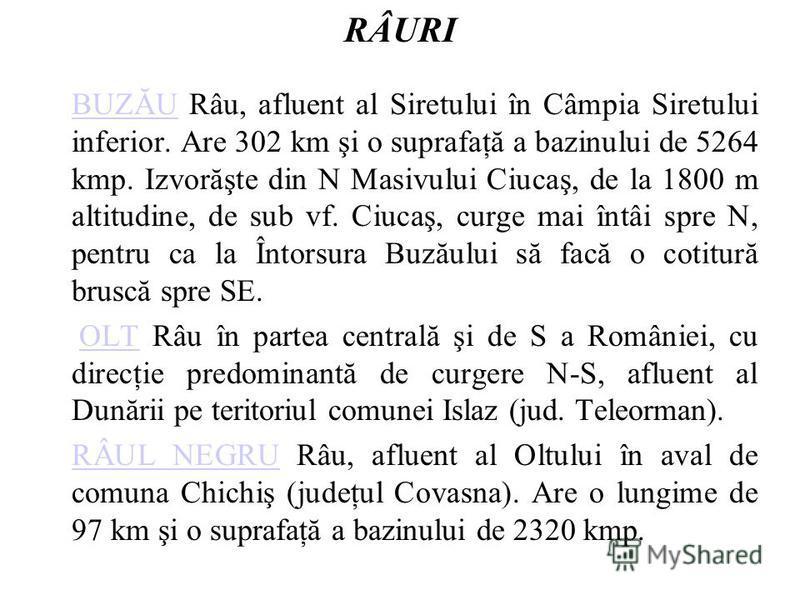 RÂURI BUZĂUBUZĂU Râu, afluent al Siretului în Câmpia Siretului inferior. Are 302 km şi o suprafaţă a bazinului de 5264 kmp. Izvorăşte din N Masivului Ciucaş, de la 1800 m altitudine, de sub vf. Ciucaş, curge mai întâi spre N, pentru ca la Întorsura B