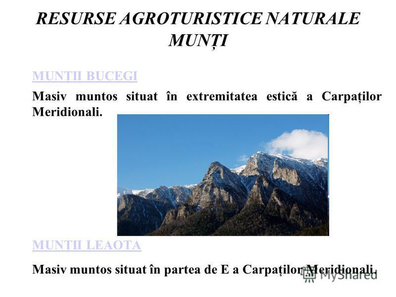 RESURSE AGROTURISTICE NATURALE MUNŢI MUNŢII BUCEGI Masiv muntos situat în extremitatea estică a Carpaţilor Meridionali. MUNŢII LEAOTA Masiv muntos situat în partea de E a Carpaţilor Meridionali.