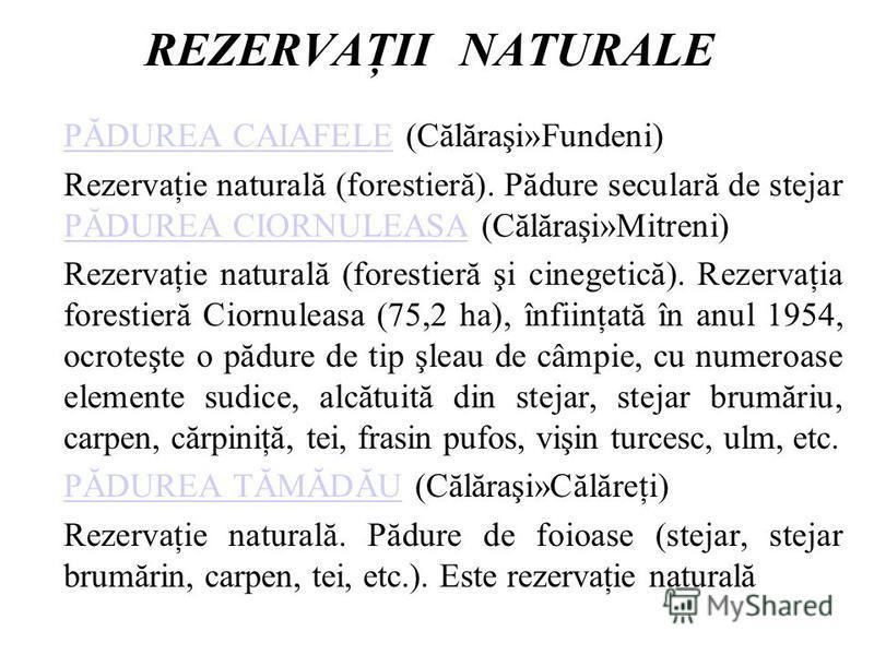 REZERVAŢII NATURALE PĂDUREA CAIAFELEPĂDUREA CAIAFELE (Călăraşi»Fundeni) Rezervaţie naturală (forestieră). Pădure seculară de stejar PĂDUREA CIORNULEASA (Călăraşi»Mitreni) PĂDUREA CIORNULEASA Rezervaţie naturală (forestieră şi cinegetică). Rezervaţia