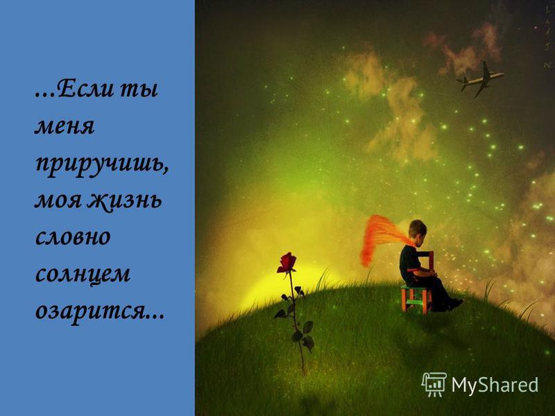 ....Если ты меня приручишь, моя жизнь словно солнцем озарится...