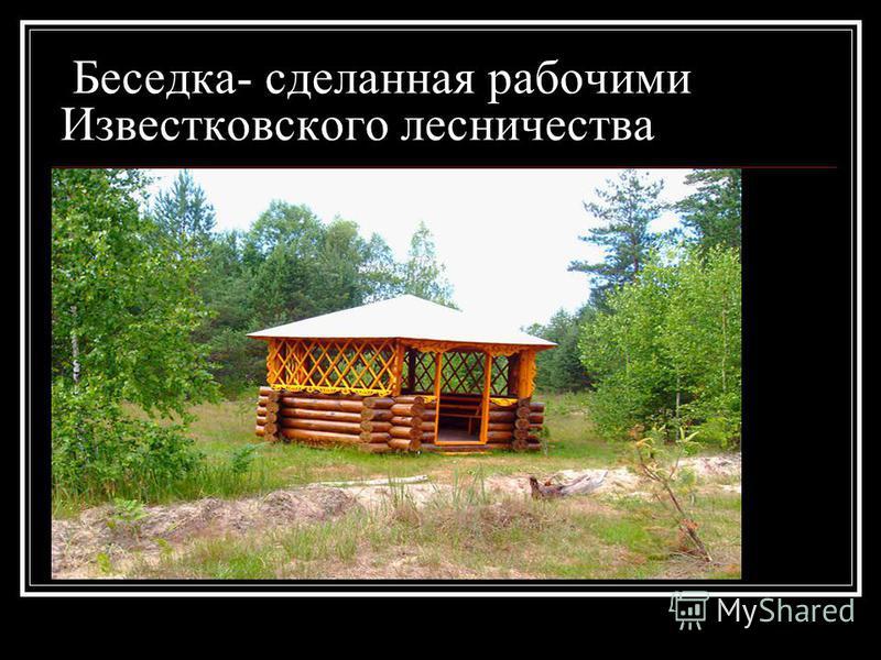 Беседка- сделанная рабочими Известковского лесничества