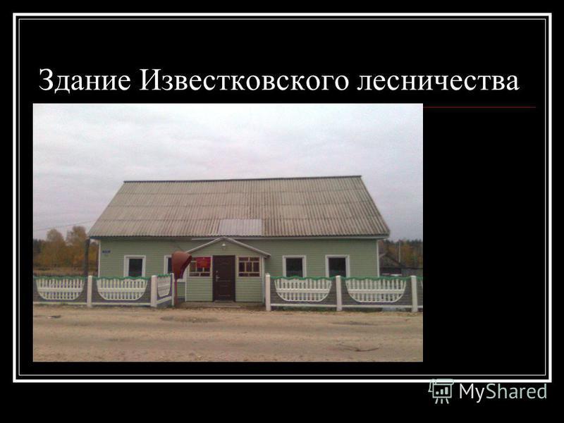 Здание Известковского лесничества