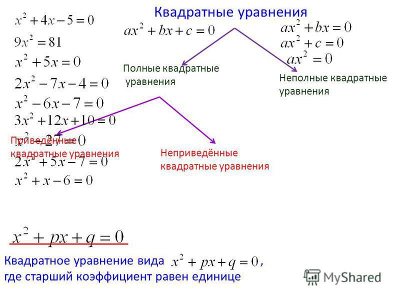 Квадратные уравнения Полные квадратные уравнения Неполные квадратные уравнения Приведённые квадратные уравнения Неприведённые квадратные уравнения Квадратное уравнение вида, где старший коэффициент равен единице