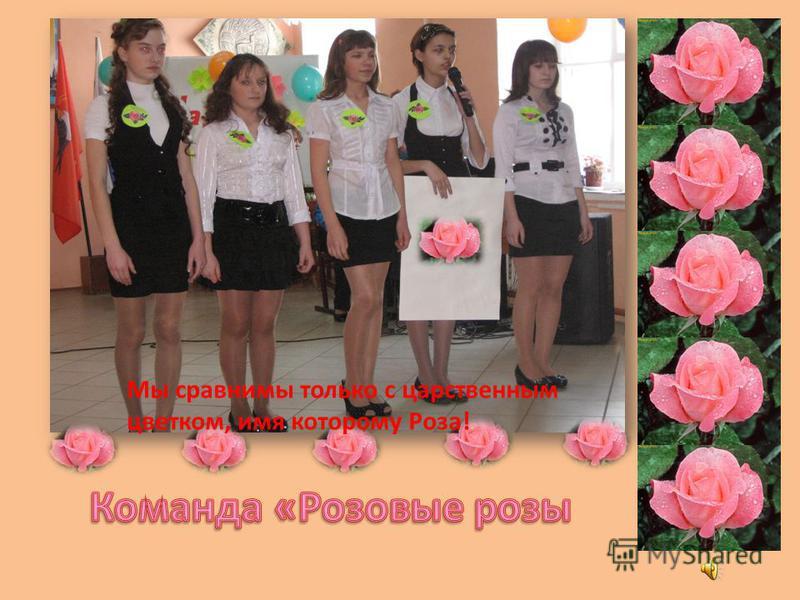 Мы сравнимы только с царственным цветком, имя которому Роза!