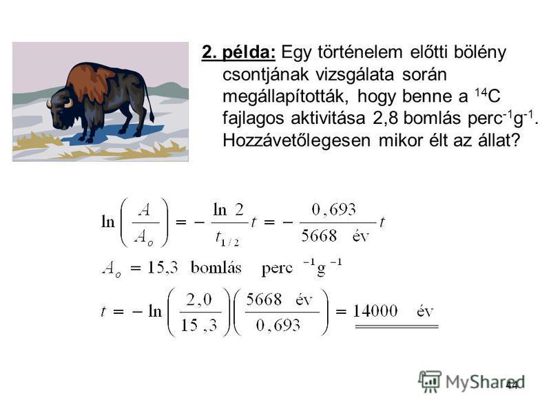 44 2. példa: Egy történelem előtti bölény csontjának vizsgálata során megállapították, hogy benne a 14 C fajlagos aktivitása 2,8 bomlás perc -1 g -1. Hozzávetőlegesen mikor élt az állat?