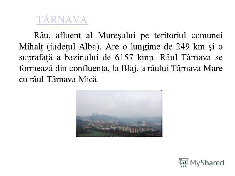 TÂRNAVA Râu, afluent al Mureşului pe teritoriul comunei Mihalţ (judeţul Alba). Are o lungime de 249 km şi o suprafaţă a bazinului de 6157 kmp. Râul Târnava se formează din confluenţa, la Blaj, a râului Târnava Mare cu râul Târnava Mică.