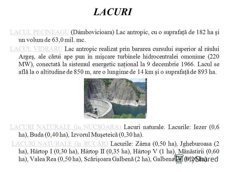 LACURI LACUL PECINEAGULACUL PECINEAGU (Dâmbovicioara) Lac antropic, cu o suprafaţă de 182 ha şi un volum de 63,0 mil. mc. LACUL VIDRARULACUL VIDRARU Lac antropic realizat prin bararea cursului superior al râului Argeş, ale cărui ape pun în mişcare tu