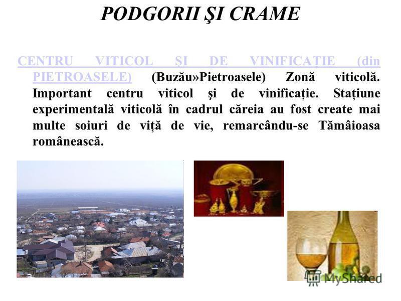 PODGORII ŞI CRAME CENTRU VITICOL ŞI DE VINIFICAŢIE (din PIETROASELE)CENTRU VITICOL ŞI DE VINIFICAŢIE (din PIETROASELE) (Buzău»Pietroasele) Zonă viticolă. Important centru viticol şi de vinificaţie. Staţiune experimentală viticolă în cadrul căreia au