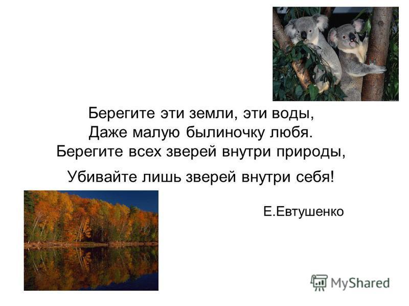 Берегите эти земли, эти воды, Даже малую былиночку любя. Берегите всех зверей внутри природы, Убивайте лишь зверей внутри себя! Е.Евтушенко