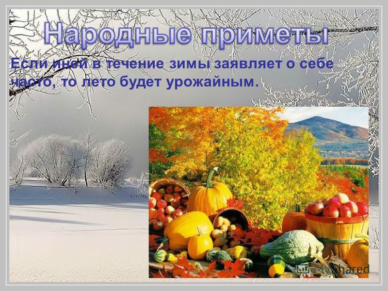 Если иней в течение зимы заявляет о себе часто, то лето будет урожайным.