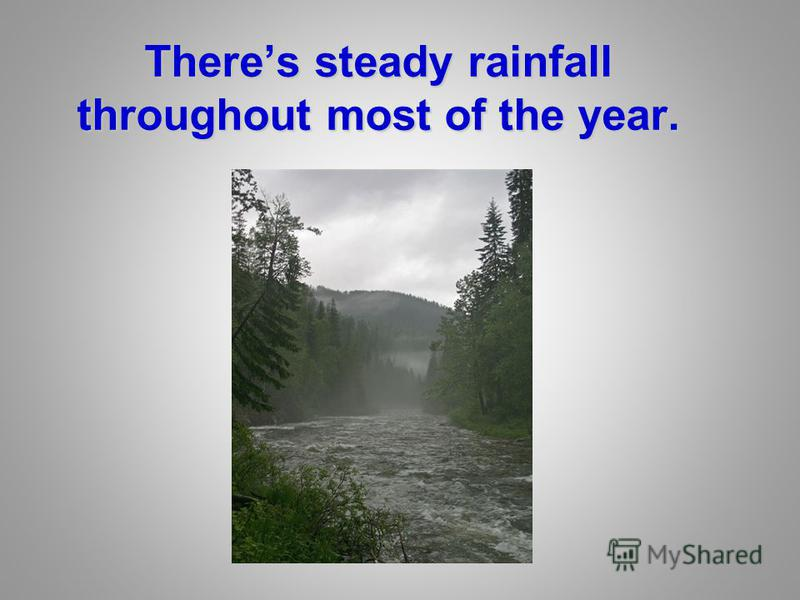 Theres steady rainfall throughout most of the year.