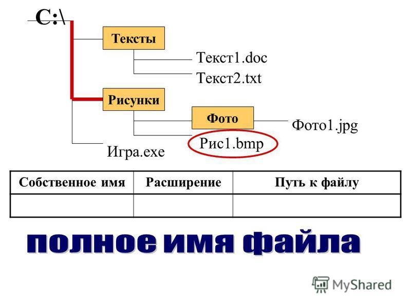 Тексты С:\ Рисунки Фото Текст1.doc Текст2.txt Рис1.bmp Фото1.jpg Игра.exe Собственное имяРасширениеПуть к файлу