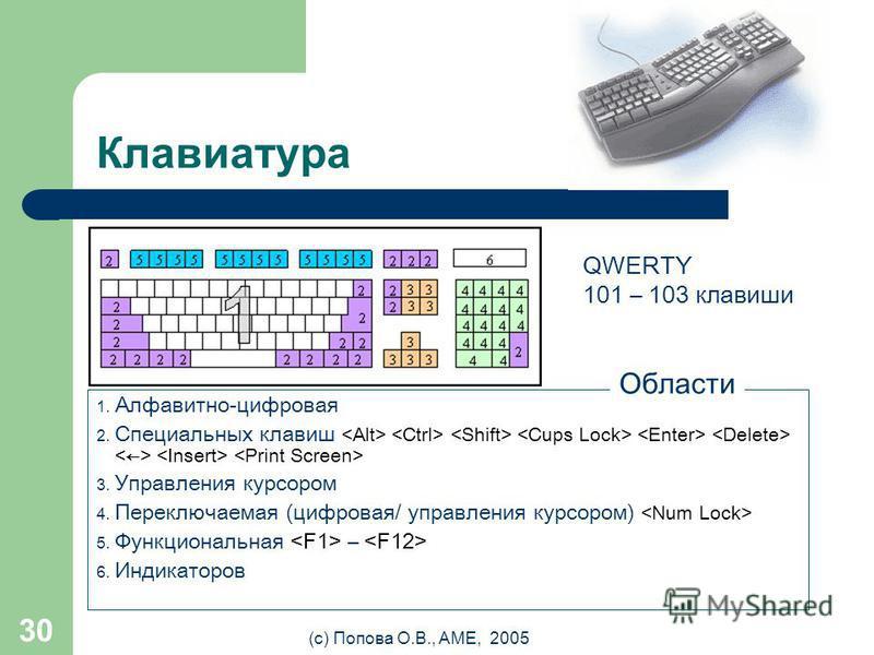 (с) Попова О.В., AME, 2005 29 Дигитайзер (digitizer/ graphic tablet/ графический планшет) Это устройство на десять лет старше мыши, однако из- за своей дороговизны оно до сих пор не заменило ее.