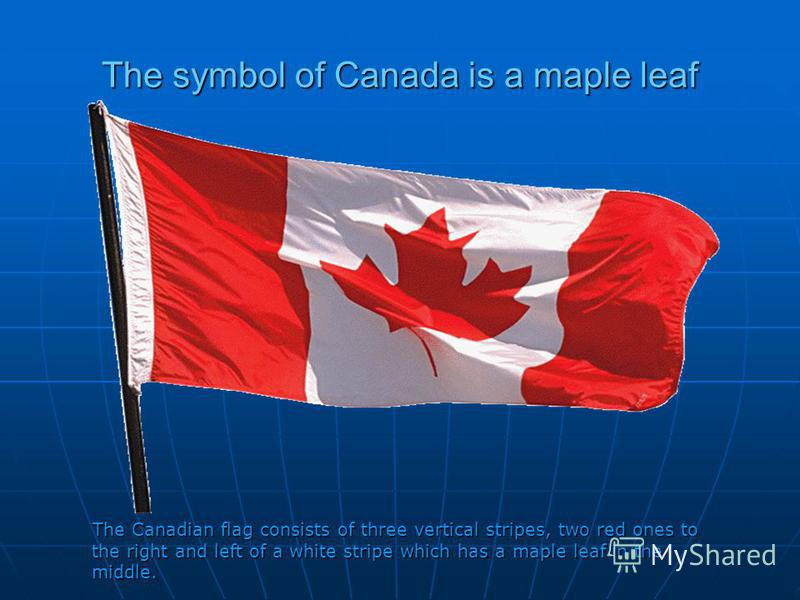 The symbol of Canada is a maple leaf The Canadian flag consists of three vertical stripes, two red ones to the right and left of a white stripe which has a maple leaf in the middle. The Canadian flag consists of three vertical stripes, two red ones t