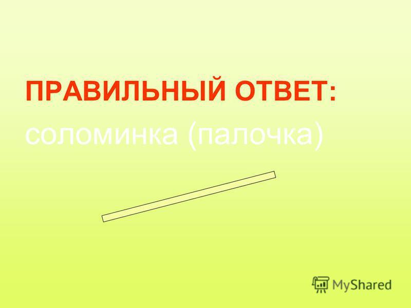 ПРАВИЛЬНЫЙ ОТВЕТ: соломинка (палочка)
