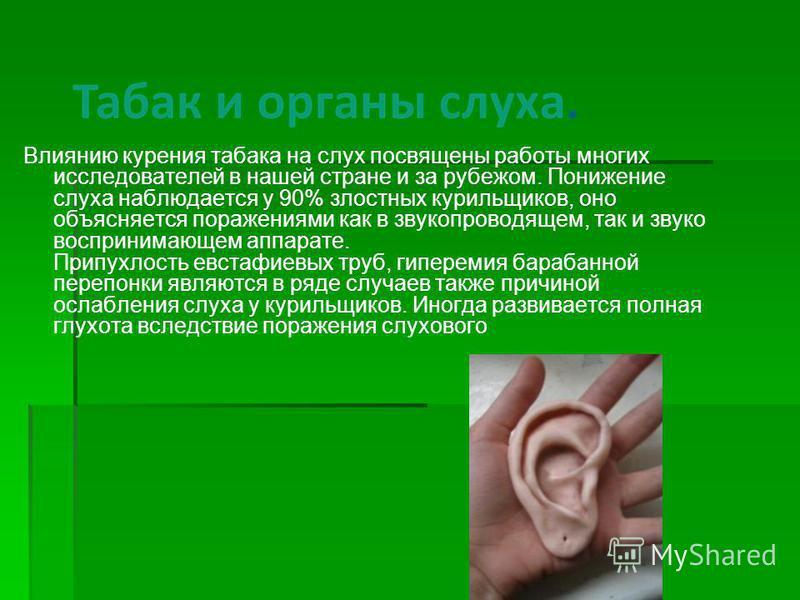 Влиянию курения табака на слух посвящены работы многих исследователей в нашей стране и за рубежом. Понижение слуха наблюдается у 90% злостных курильщиков, оно объясняется поражениями как в звукопроводящем, так и звуко воспринимающем аппарате. Припухл