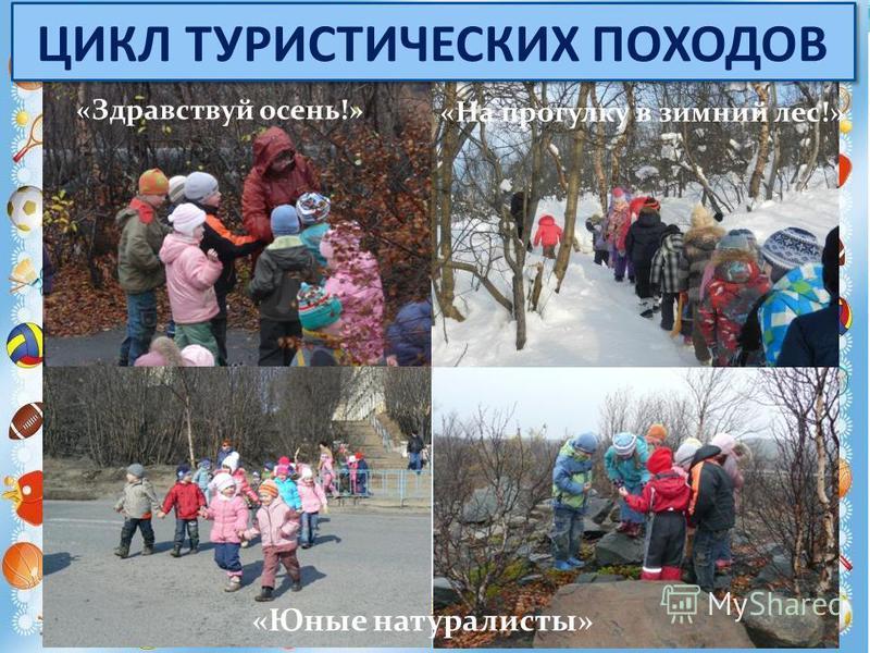 «Здравствуй осень!» «На прогулку в зимний лес!» «Юные натуралисты» ЦИКЛ ТУРИСТИЧЕСКИХ ПОХОДОВ