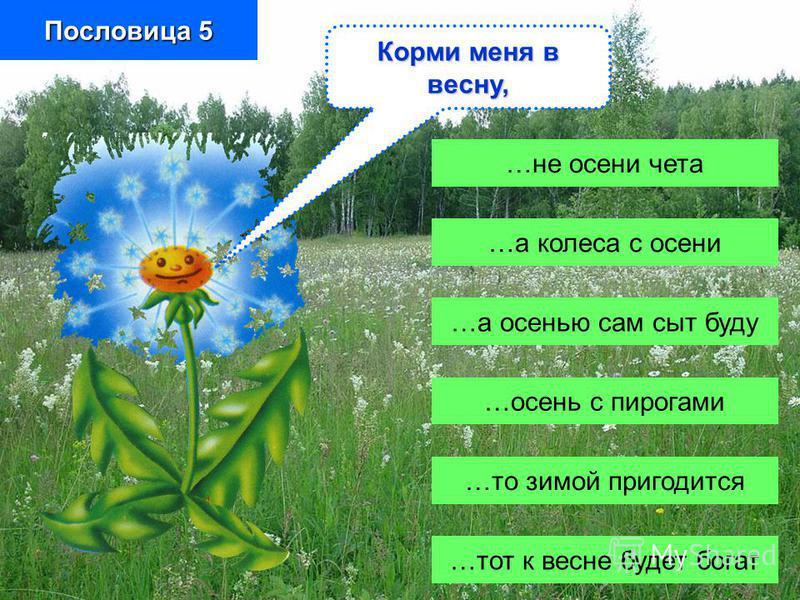 …не осени чета …а колеса с осени …а осенью сам сыт буду …осень с пирогами …то зимой пригодится …тот к весне будет богат Пословица 5 Корми меня в весну,