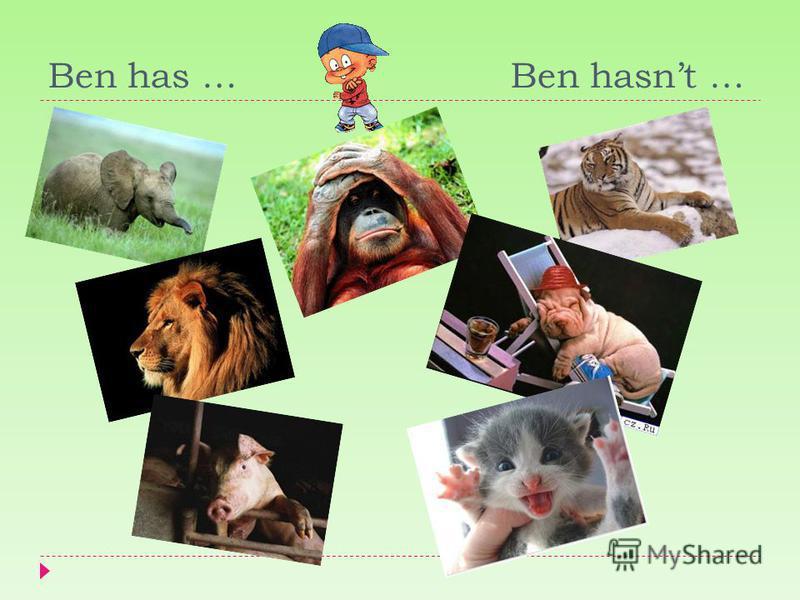 Ben has … Ben hasnt …
