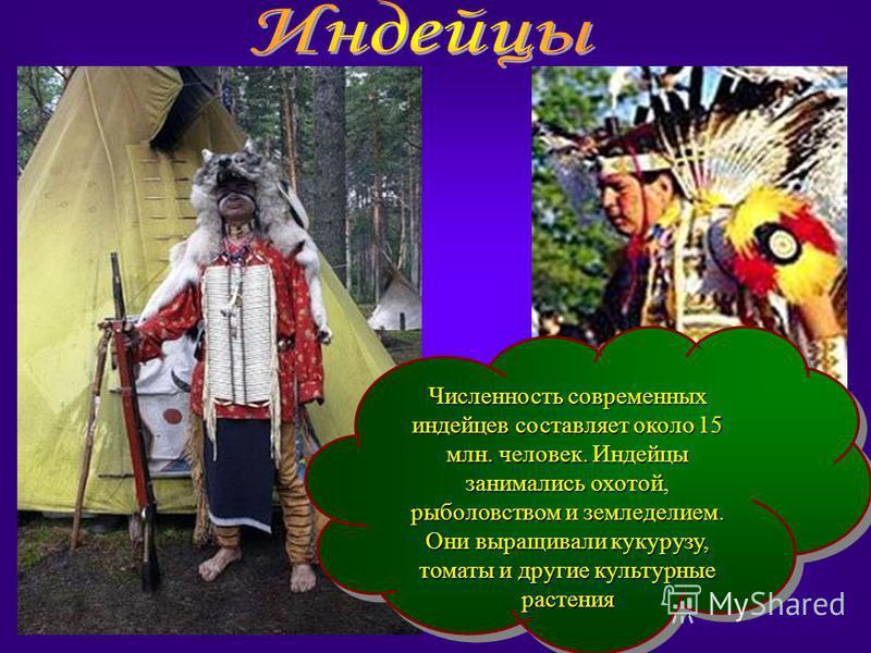 Численность современных индейцев составляет около 15 млн. человек. Индейцы занимались охотой, рыболовством и земледелием. Они выращивали кукурузу, томаты и другие культурные растения