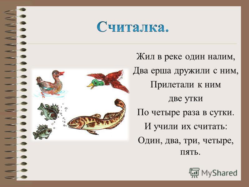 Жил в реке один налим, Два ерша дружили с ним, Прилетали к ним две утки По четыре раза в сутки. И учили их считать: Один, два, три, четыре, пять.