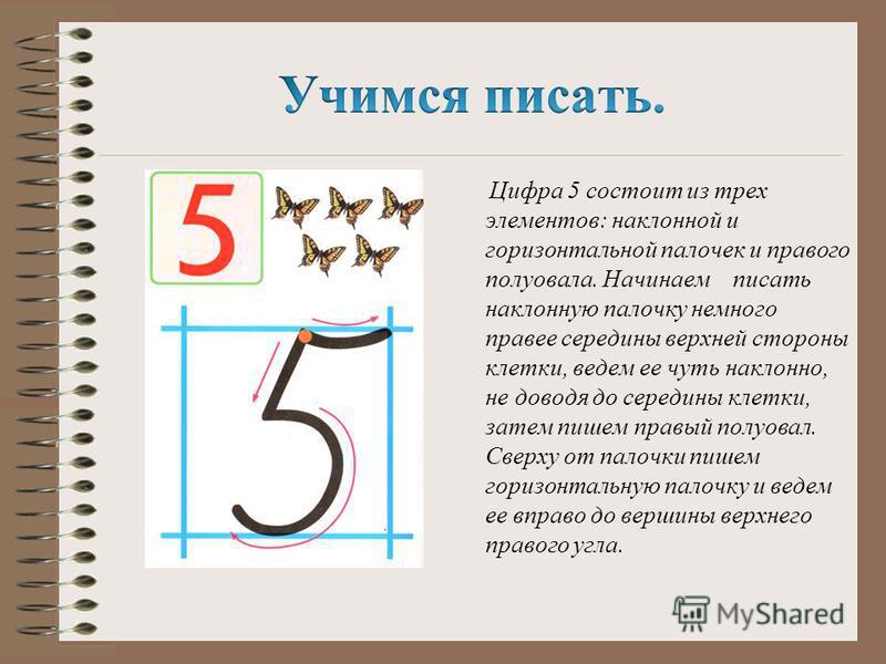 Цифра 5 состоит из трех элементов: наклонной и горизонтальной палочек и правого полуовала. Начинаем писать наклонную палочку немного правее середины верхней стороны клетки, ведем ее чуть наклонно, не доводя до середины клетки, затем пишем правый полу