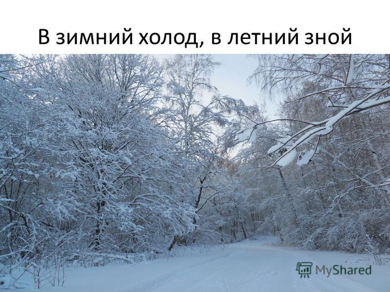 В зимний холод, в летний зной