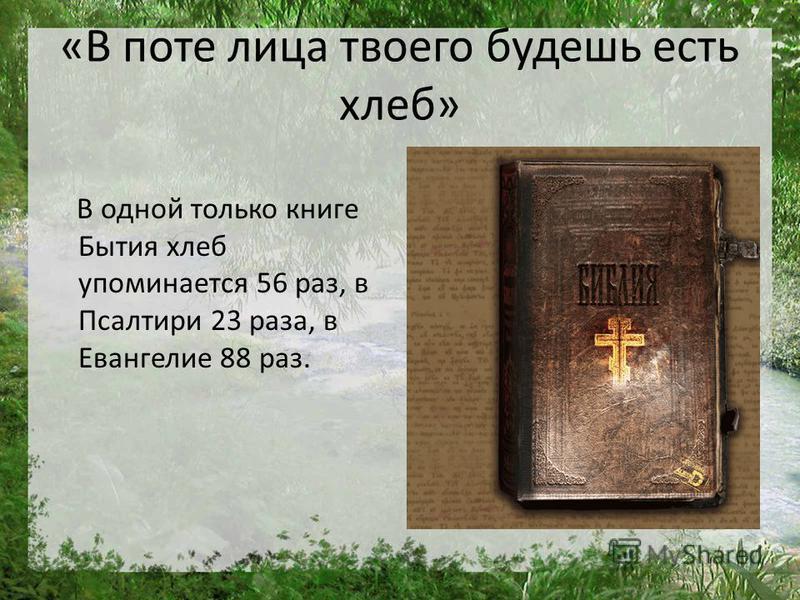 «В поте лица твоего будешь есть хлеб» В одной только книге Бытия хлеб упоминается 56 раз, в Псалтири 23 раза, в Евангелие 88 раз.