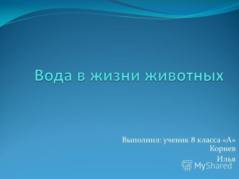 Выполнил: ученик 8 класса «А» Корнев Илья