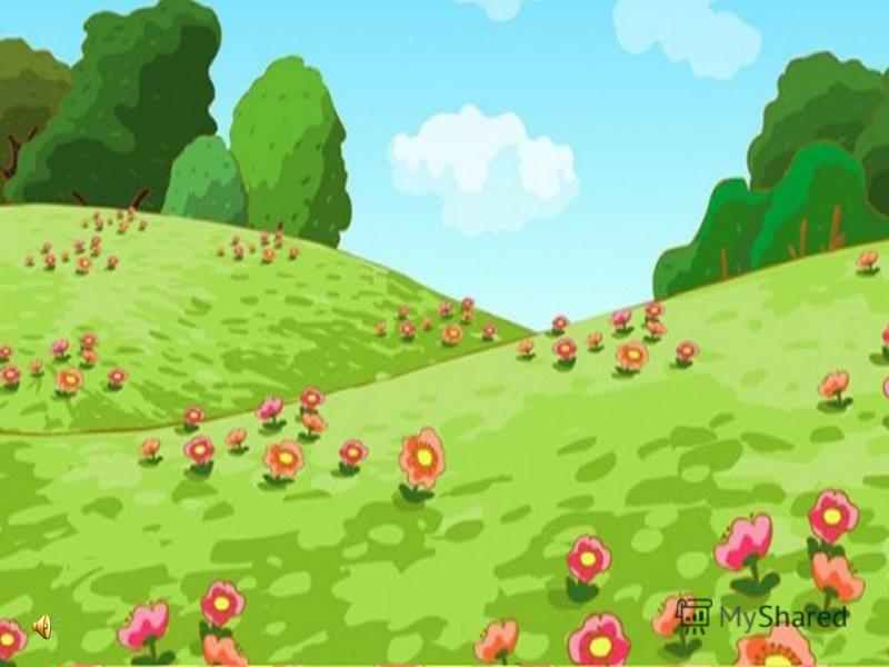 Летняя полянка( картинка)
