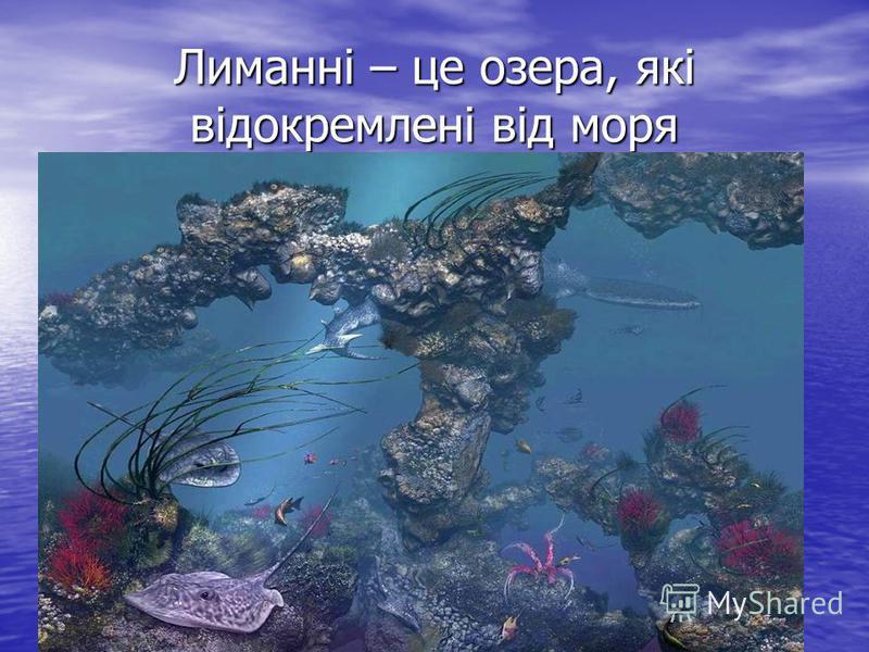 Лиманні – це озера, які відокремлені від моря