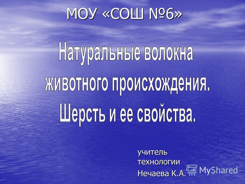 МОУ «СОШ 6» учитель технологии Нечаева К.А.