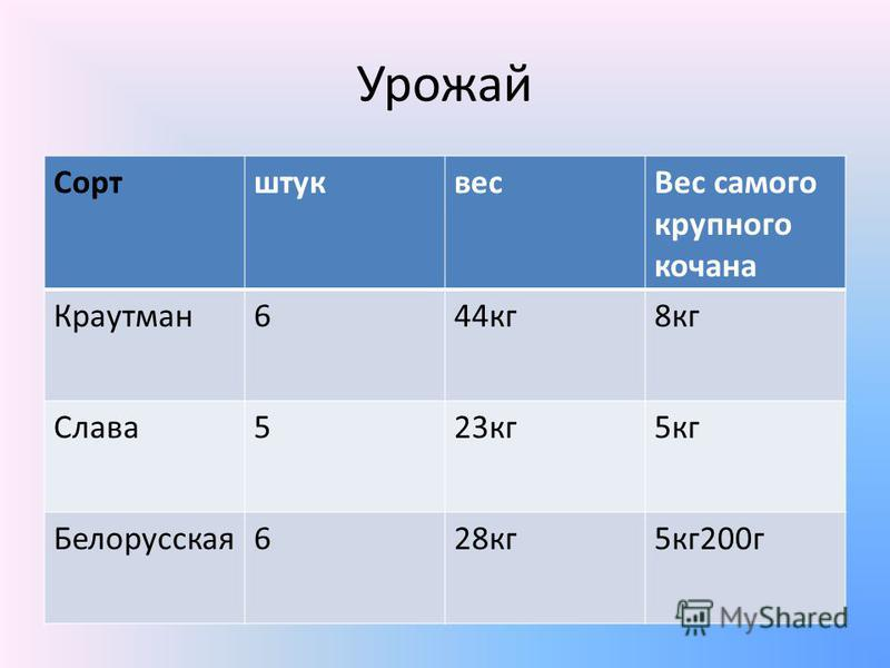 Урожай Сортштуквес Вес самого крупного кочана Краутман 644 кг 8 кг Слава 523 кг 5 кг Белорусская 628 кг 5 кг 200 г