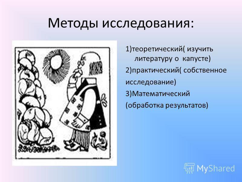 Методы исследования: 1)теоретический( изучить литературу о капусте) 2)практический( собственное исследование) 3)Математический (обработка результатов)
