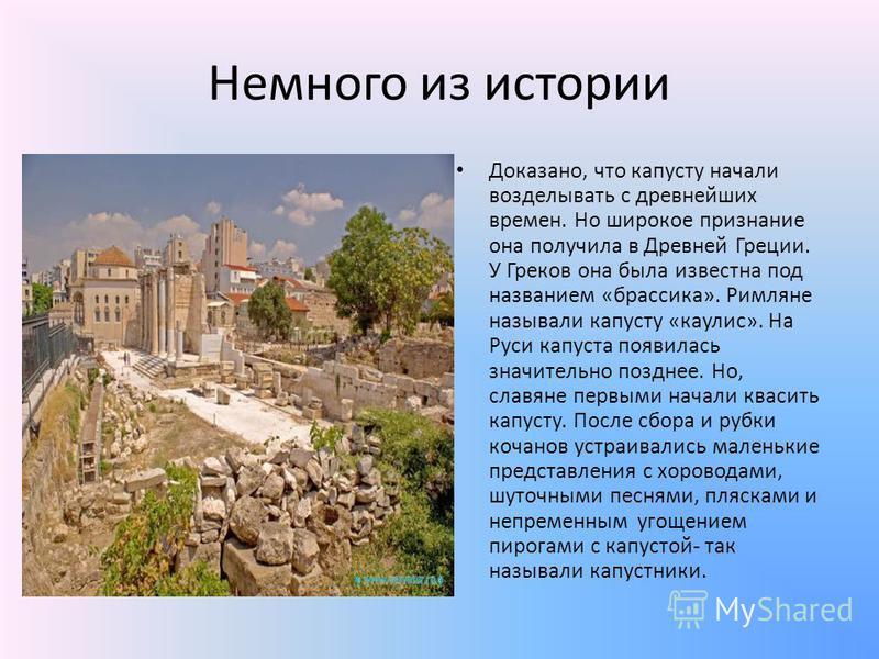 Немного из истории Доказано, что капусту начали возделывать с древнейших времен. Но широкое признание она получила в Древней Греции. У Греков она была известна под названием «брасика». Римляне называли капусту «каулис». На Руси капуста появилась знач