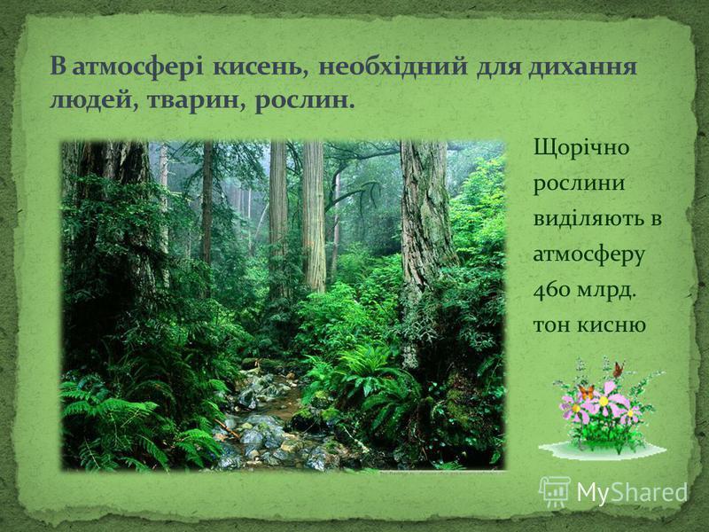 Щорічно рослини виділяють в атмосферу 460 млрд. тон кисню