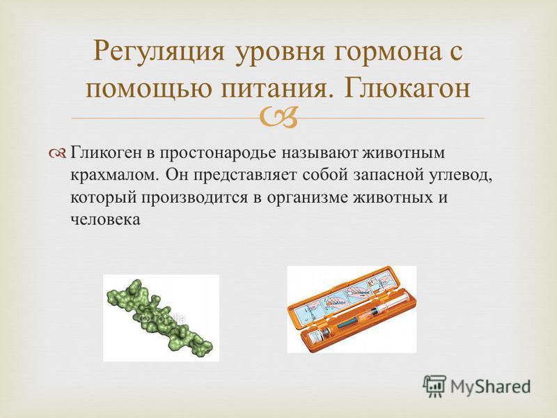 Гликоген в простонародье называют животным крахмалом. Он представляет собой запасной углевод, который производится в организме животных и человека Регуляция уровня гормона с помощью питания. Глюкагон